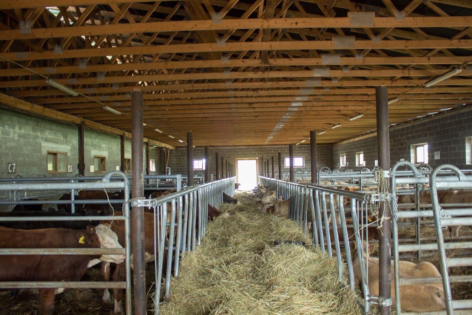 Jumta koka kopnes lauksaimniecības ražotnēm fermām un dzīvnieku izsoļu namiem
